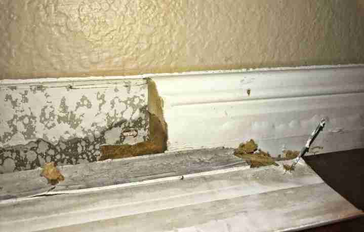 water behind baseboards