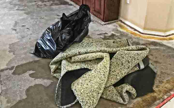 Bagging Wet Carpet Pad